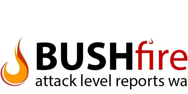 BAL Report